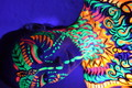 the best bodypainting 2017 - harley, UV painting....